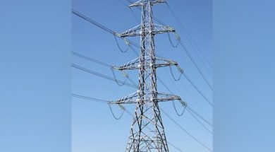 All households to have electricity by March 31- Singh