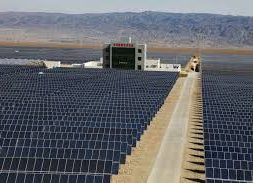 China Plans Subsidy-Free Solar and Wind Projects