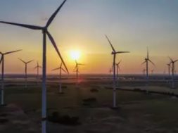 Gujarat government suggests wind park to accommodate central developers
