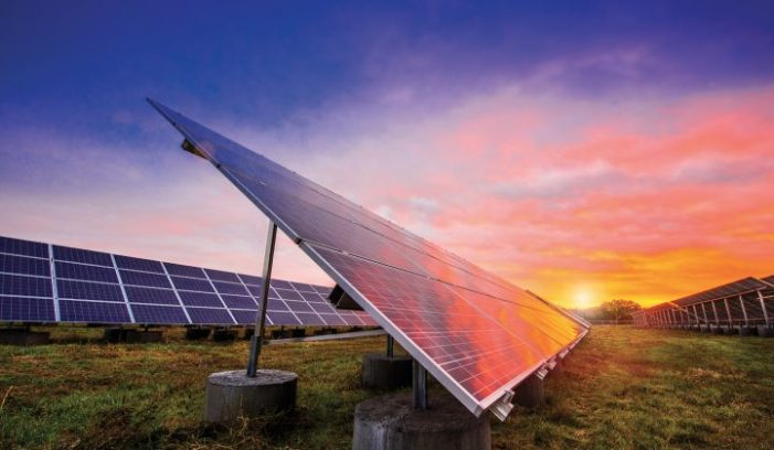 India Cuts Size Of Biggest Solar Tender To A Third After Tepid Response
