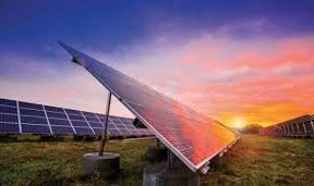 Need policy framework to further promote solar energy in dairies- Minister