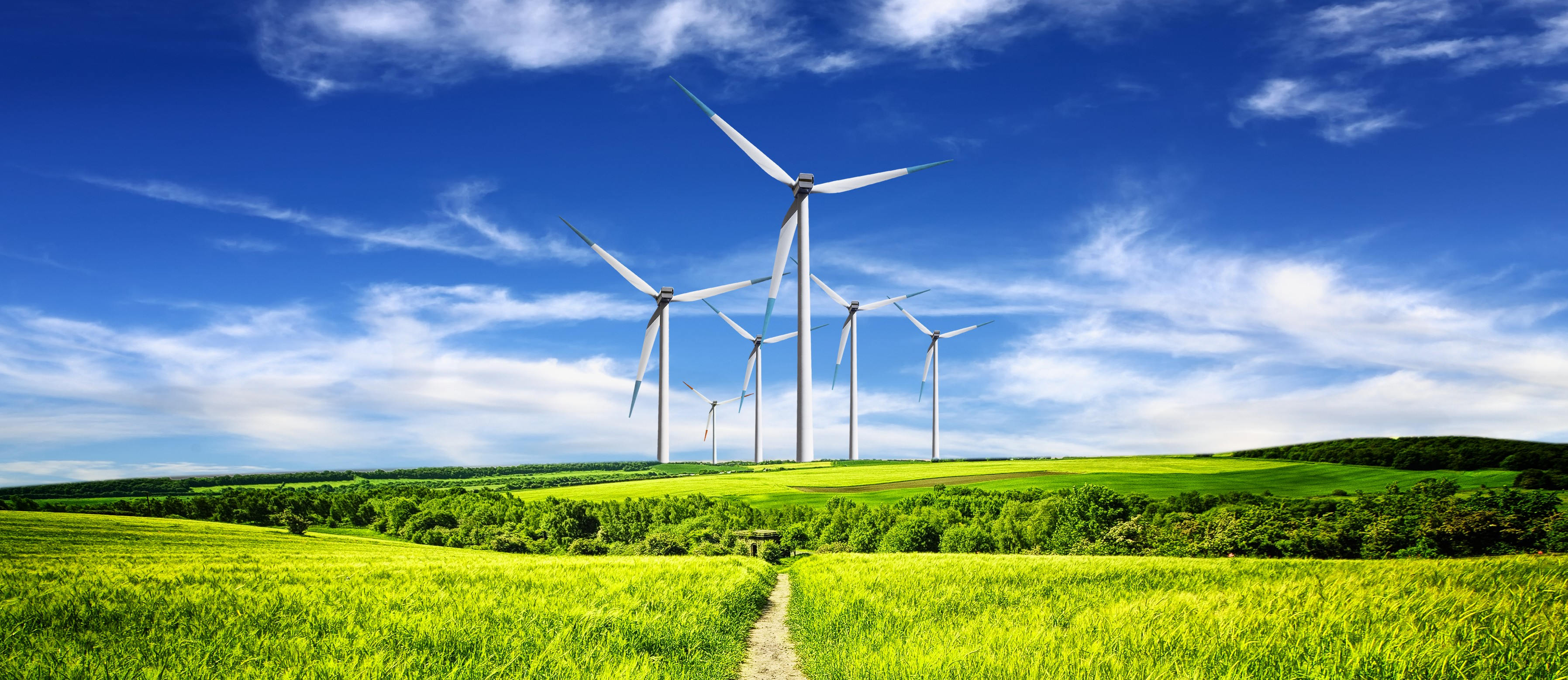 New industries can feast on volatile wind, solar: Q&A