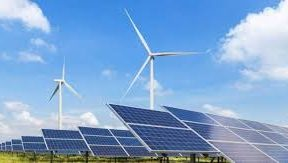 Renewable industry needs policy push