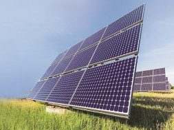 Six extensions later, govt cancels sole bid for solar unit, power plant