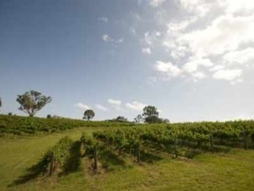 Australian court bars new coal mine development, cites environmental impact