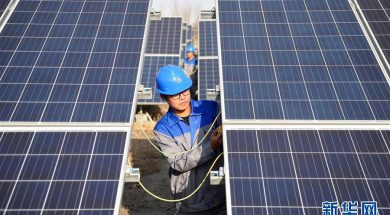 Glowing year for the solar power sector