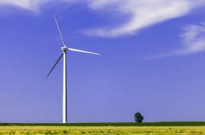 Gujarat mandates EPC, OEM details in wind power bids