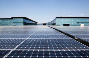 Lundberg Family Farms Announces Major Expansion of On-Site Solar Arrays