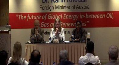 Makes sense to rethink 'renewable-only' future- Austrian foreign minister