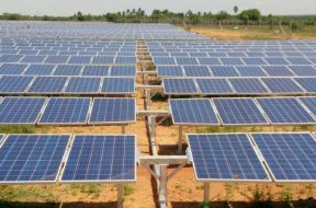TN solar energy policy for 2019 sets 9,000 MW as target
