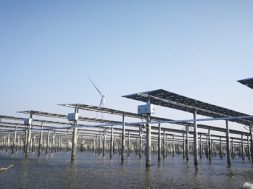 100MW Solar-Fishery Plant Takes the Lead with Huawei 1500V Smart PV Solution