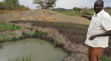 Azuri GrowFast solar irrigation system named winner of UN Uganda renewable energy fund