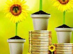 IREDA likely to blacklist Birla Sunlife Mutual Fund