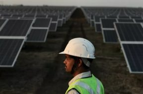 India solar tender spree continues north and south