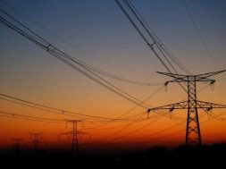Italy's Enel puts faith in green energy, grids to power growth