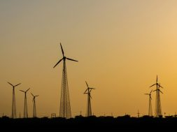 The renewable energy industry will thrive but needs to tread with caution