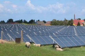Tonga Power Ltd signs purchase agreement with Sunergise to built solar plant