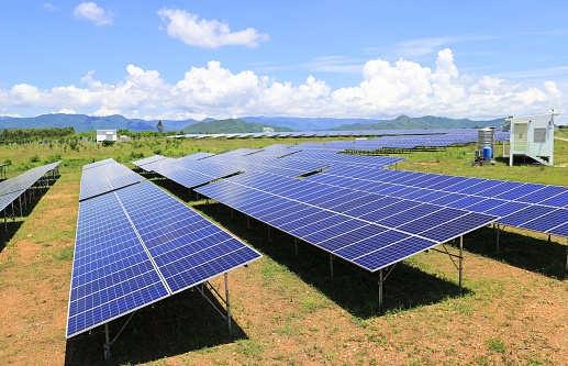 US solar installations to rebound in 2019 as prices plummet: Woodmac