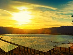 IMC's first- Green Masala Bonds to fund solar plant