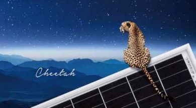 Jinkosolar's Cheetah Enabling Next-generation Wafer Designs