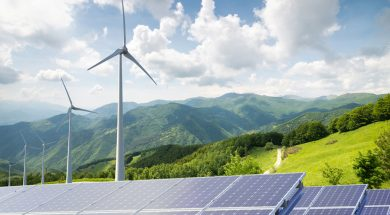 Renewable capacity highlights