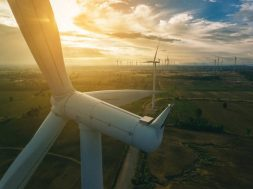 SECI's 1,200 MW wind energy sale gets tepid response