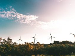 US wind power grew 8% in 2018 amid record demand