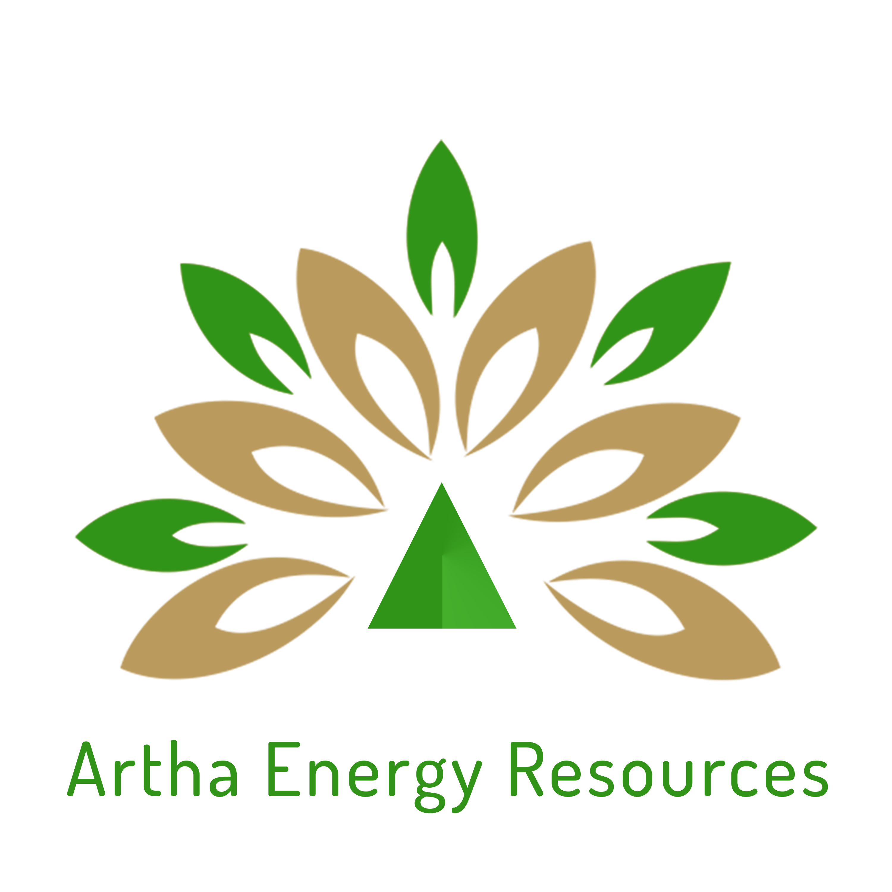 In an exclusive talk with Animesh Damani, Managing Partner – Artha Energy Resources