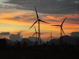 'Bimstec nations could tap India's green energy transition'