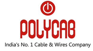 Polycab Q4 net profit down 27% at Rs 137.25 crore