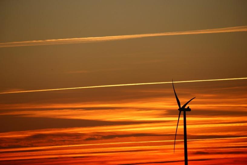 Renewables venture Total Eren growing faster than expected, says CEO