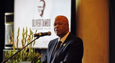 South African Energy Minister opens door for private firms for electricity generation