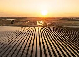 Strong global solar market outlook