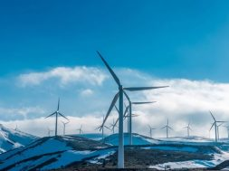 Wind tariffs don't fall further in latest auction