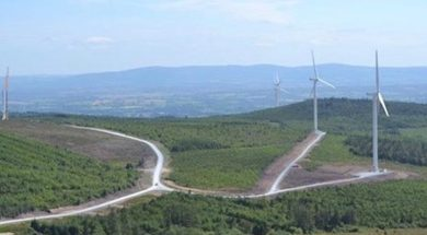 ESB Issues Ireland's First Corporate Public Green Bond