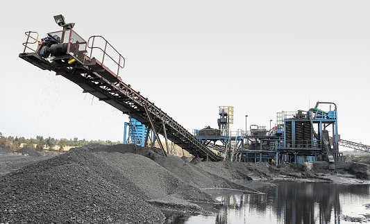 India to maintain its level of thermal coal imports: Fitch