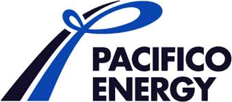Pacifico Energy Opens 40 MW Solar Power Plant In Vietnam