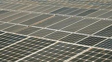 Solar Exports from India to US to Incur 25% Safeguard Duty
