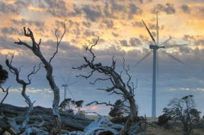 Which energy storage technology is going to power Australia's future