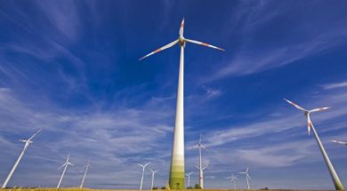 Wind power firms left in the lurch