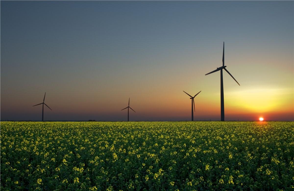 Pegasus Group Holdings Acquires Solar Innovator Plus Minus Power