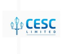 CESC not to go for renewables biz