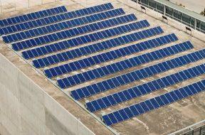 Cap renewable energy tariff at Rs 3 per unit under NTPC, SECI auctions- Ind body