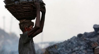 Economic Survey Fossil fuels, coal to remain an important source of energy