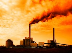Govt committed to combat climate change at highest level Env Ministry