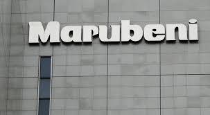 Japan's Marubeni backs blockchain crowd-sourcing platform for solar, wind farms