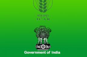 Solar fence energiser with alarm for EPC Bikaner