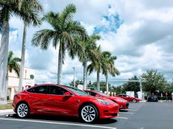 Tesla-Model-3-Model-S-red-line