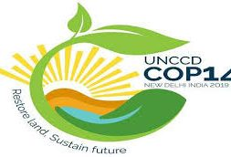 UNCCD expects New Delhi COP to be turning point