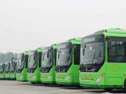buses-fleet